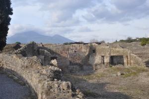 Mt Vesuvius in the background