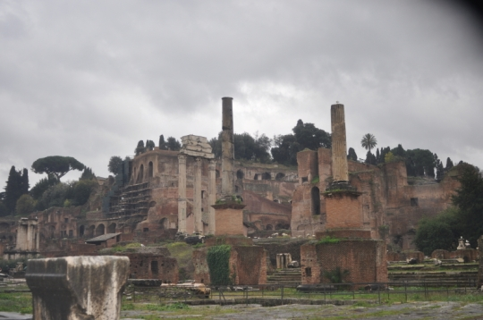 View up to Palatine Hill