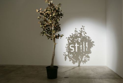 http://www.theresidentarchitect.com/2010/11/amazing-shadow-art.html#axzz2N3XkzDbj