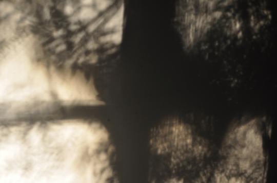 Shadow on Loungeroom Wall