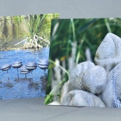 high resolution images of environmental sculprure