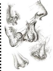 Nose study - tinted charcoal