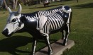 X Ray Cow