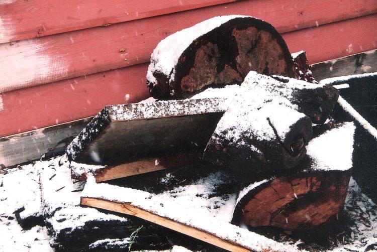Dawn Whitehand snow woodpile