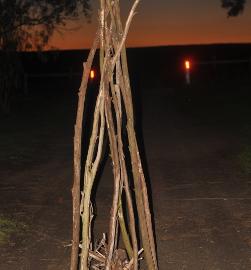 TeePee construction using tree branches