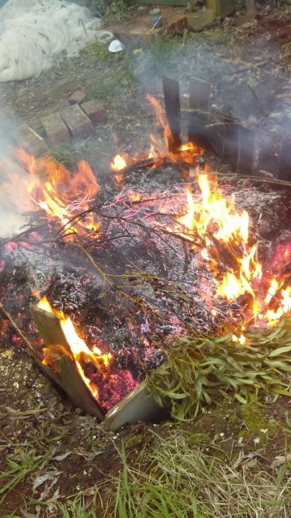 Pit Firing Dawn Whitehand Ballarat Victoria